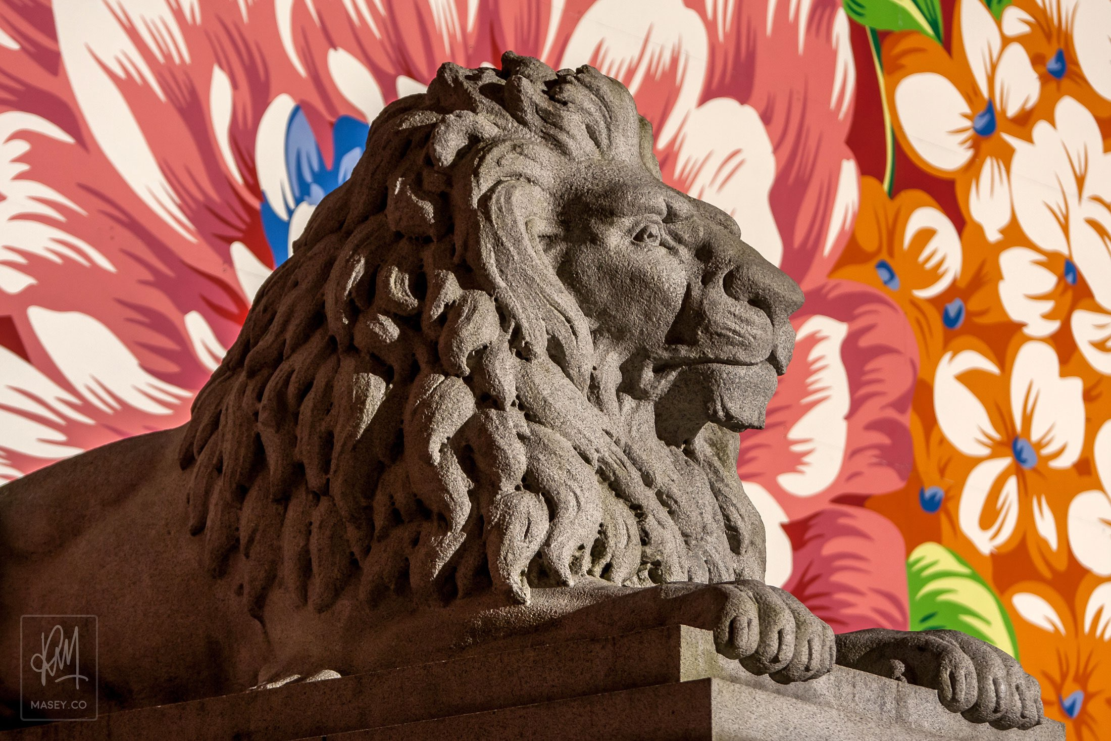 With their new colourful floral background, the Art Gallery stone Lions don't seem so imposing anymore.