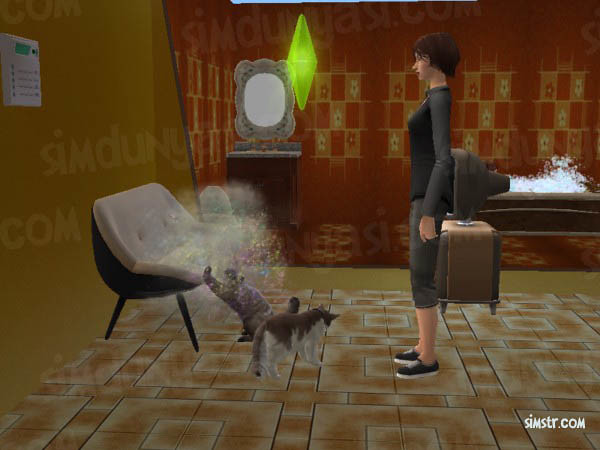 The Sims 2 Pets Cats Scratch