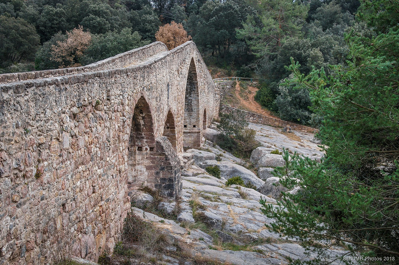 Puente medieval de Pedret