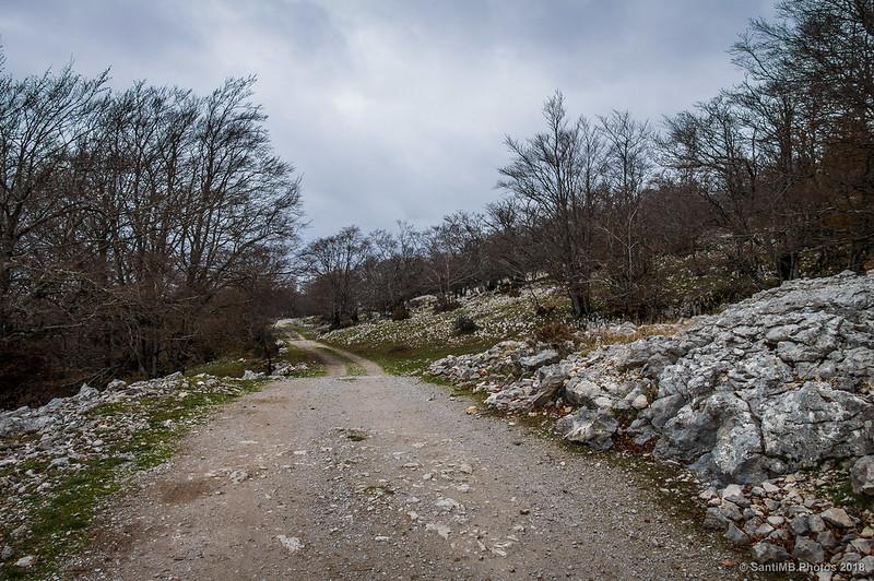Camino de Eskitza
