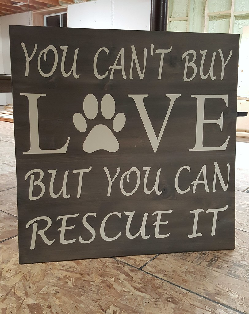 DIY Dog Rescue Wall Art