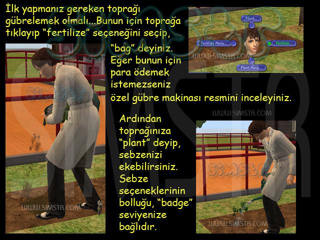 The Sims 2 Seasons Compost Plant Fertilize