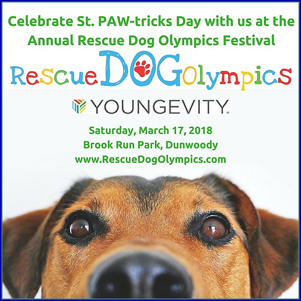 http://www.rescuedogolympics.com/