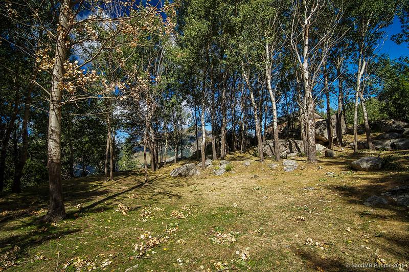 Racó de l'Ombra Tranquil·la en el Pla de l'Ermita
