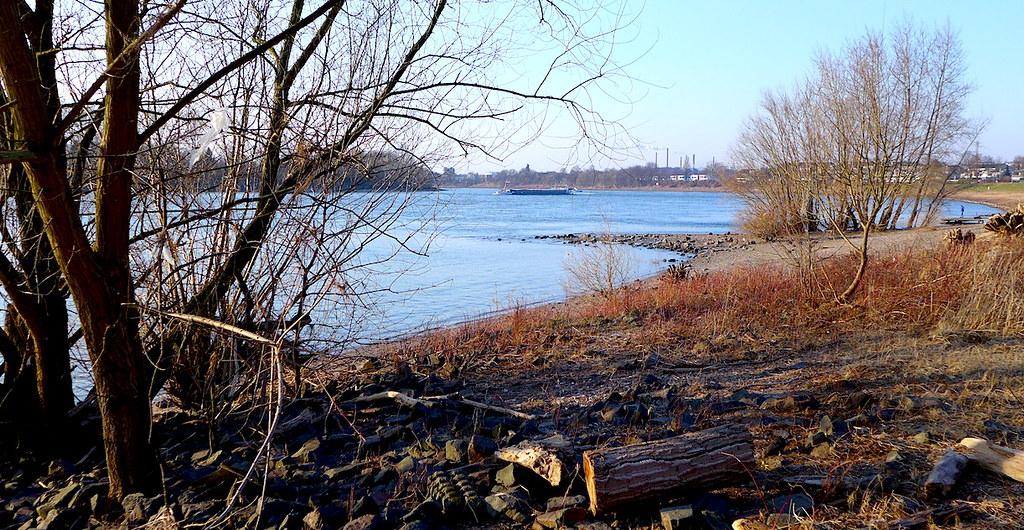28 февраля 2018, берег Рейна у парка Бенрат (Дюссельдорф).