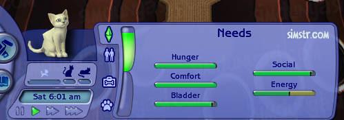 The Sims 2 Pets Kitten Cat Needs