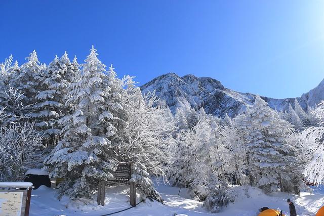 冬の行者小屋から見る樹氷と赤岳