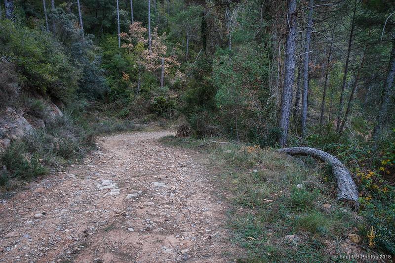 Pista en dirección a la Via Verde del Llobregat