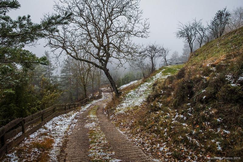Camí de Cal Toni en Sant Jaume de Frontanyà