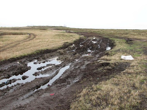 Tire tracks causing damage on tundra in Alaska