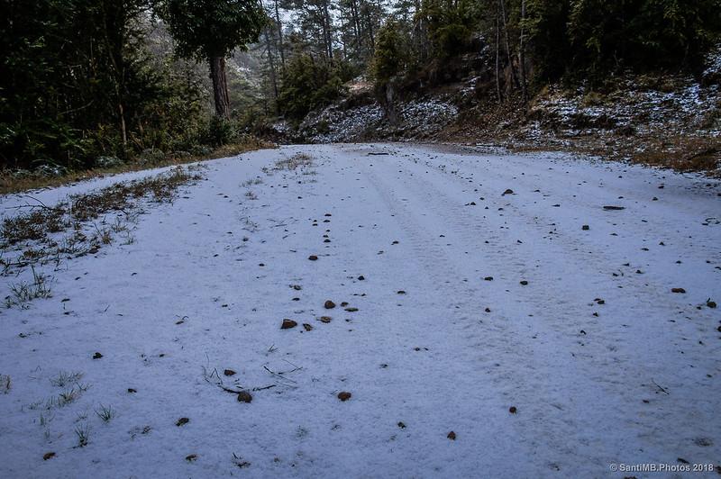 Nieve granulada