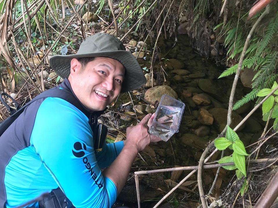 野放調查後的台灣白魚。圖片來源:王堯弘。