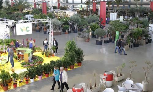 Noticias de ag imes viveros el rosal expone sus productos for Viveros el rosal