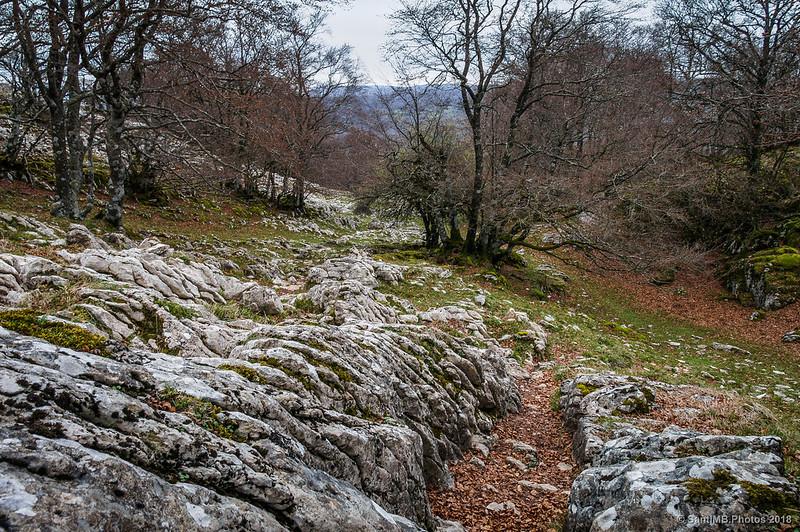 Camino de San Adrián de Lizarraga al camino de Eskitza
