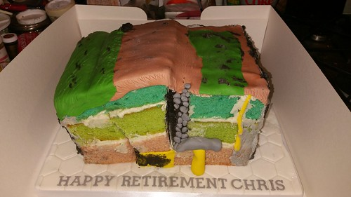 Geological retirement cake | by platypus1974