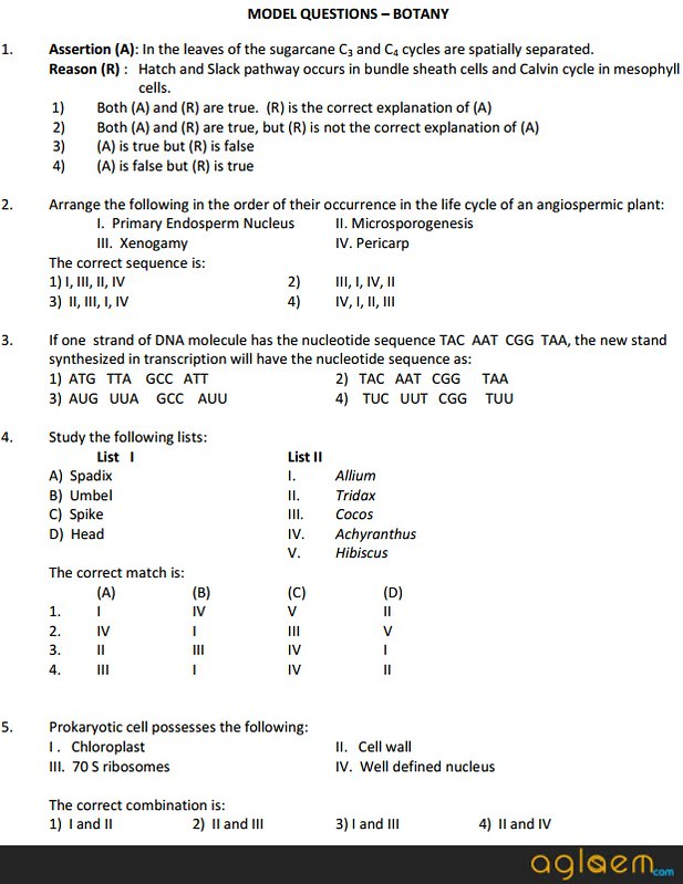 EAMCET Sample Question Paper