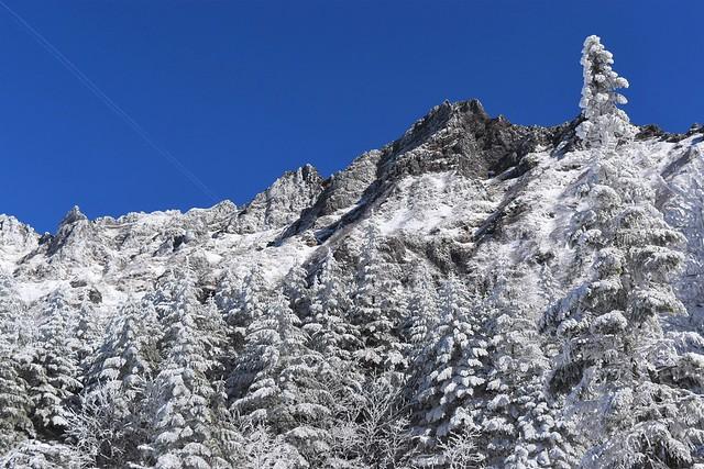 冬の八ヶ岳登山 樹氷と横岳