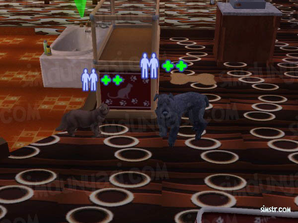 The Sims 2 Pets Playing