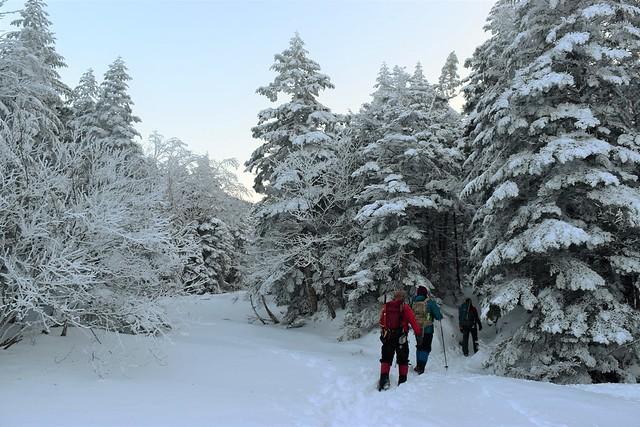 美濃戸口~行者小屋 雪の登山道