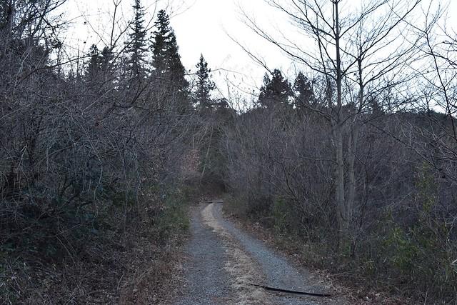 高川山登山口までの林道