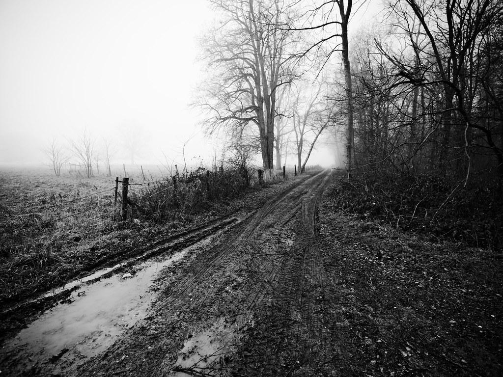 Plaisirs des chemins d'hiver 38852997334_29f06464d4_b