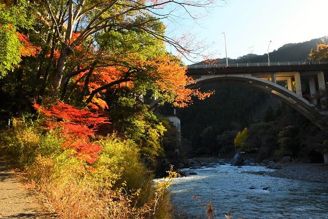 御岳渓谷 御岳橋と紅葉