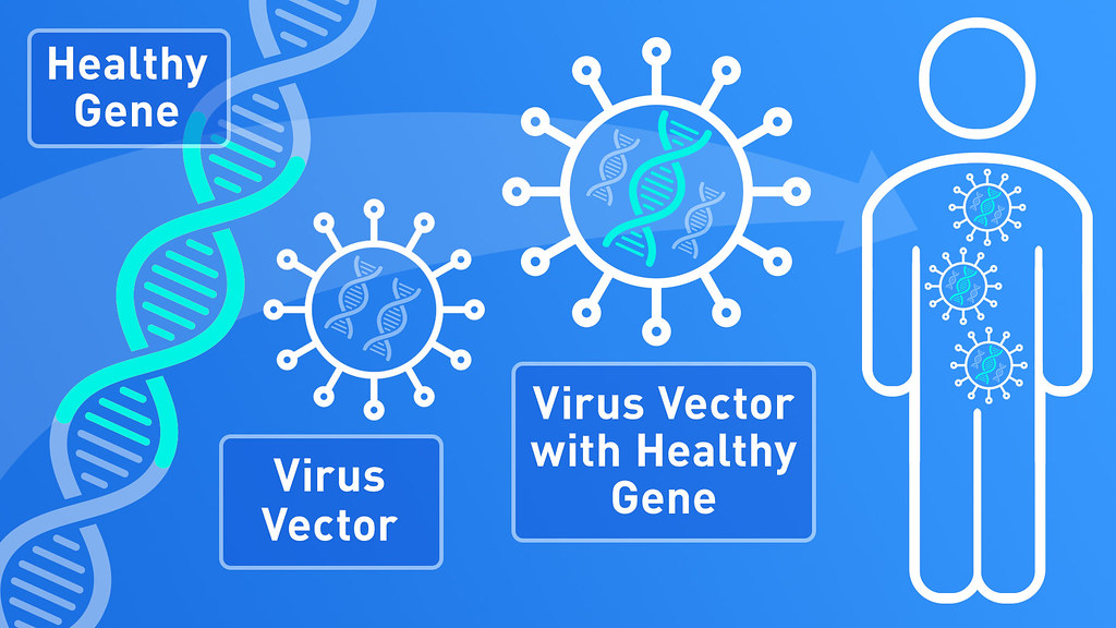 Gene Therapy Infographic Scientists Can Now Modify Genes