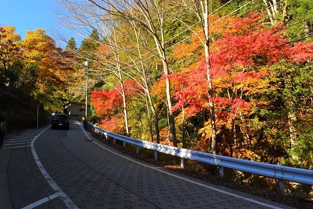御岳山ケーブルカー駅までの紅葉