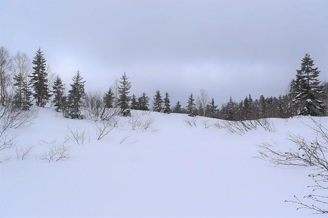 焼岳登山 途中の雪原