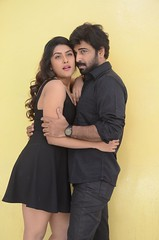 E Ee Movie Pressmeet Stills