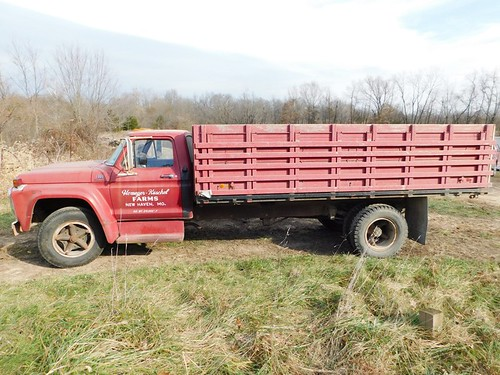 1975 Ford F-600 grain truck | by thornhill3