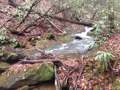 East Jones Creek