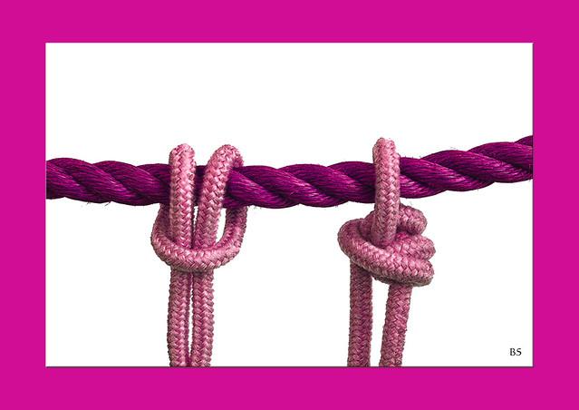 Fotospielereien: Grüne Seile - Rosafarbene Knoten ... Brigitte Stolle