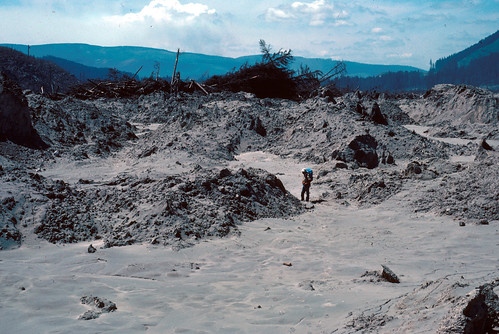 Color image shows a brownish-gray mudflat with brownish-gray mounds of debris. Behind it, there's a tall jumble of shattered trees, with a low ridge behind it. In the center of the photo, Donal Mullineaux stands contemplating the middle debris mound. He's dressed in a white hat, tan shirt, and blue jeans, with a blue pack on his back. He has his thumbs in his pockets.