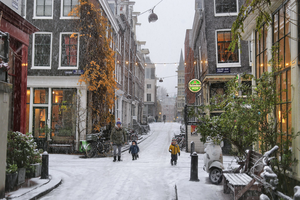snowflakes falling in the cold and cosy jordaan photo all flickr