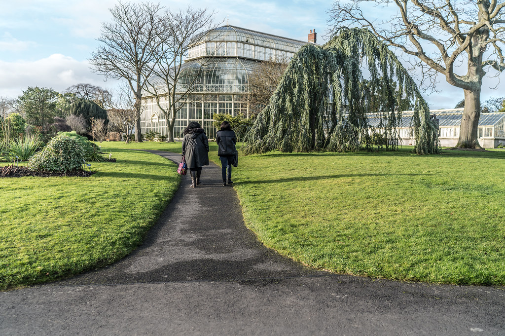 SOME OF THE GLASSHOUSES IN THE BOTANIC GARDENS 009