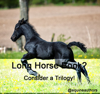 Long Horse Book? Consider a Trilogy! @equineauthors