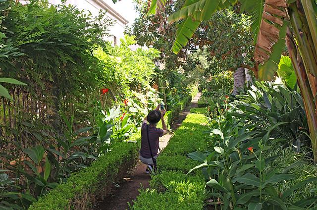 Botanical Gardens, La Orotava, Tenerife