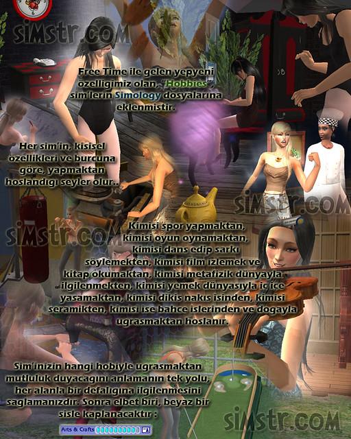The Sims 2 FreeTime Hobbies