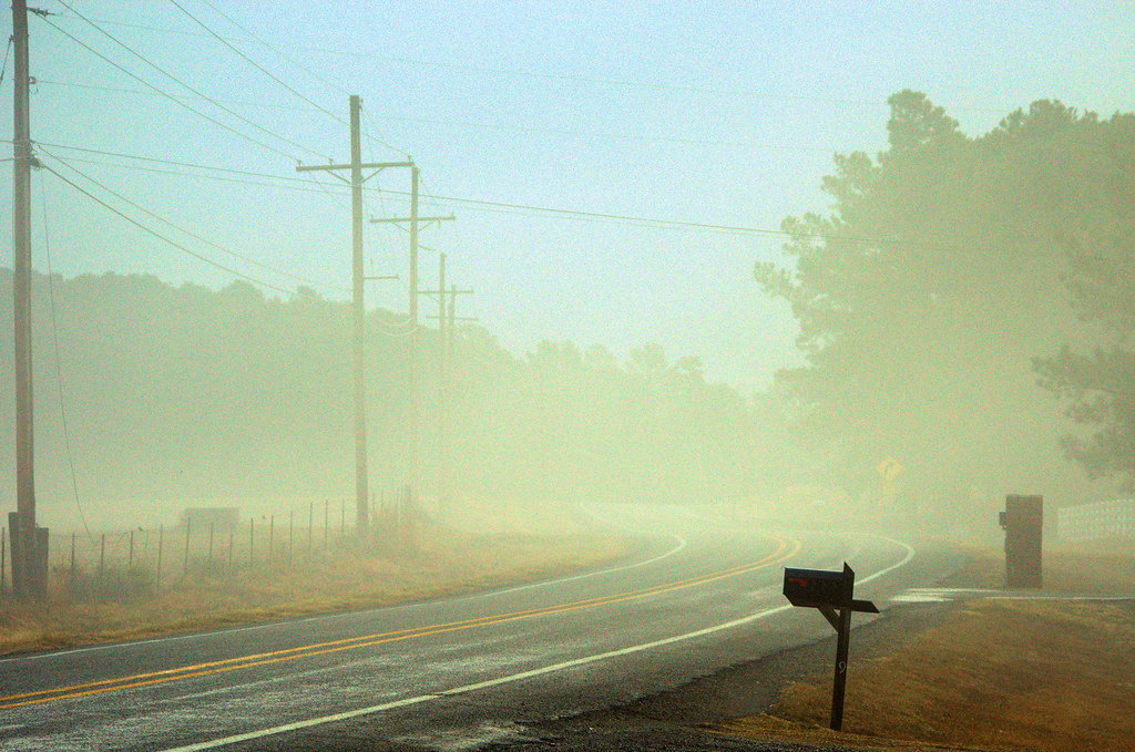 Today's photo: Fog in the morning on a Pope County, Arkansas highway; January 27, 2018 (Pentax K-3 II)