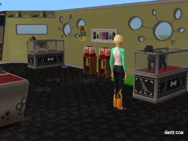 The Sims 2 Pets Buy a Dog Köpek Satın Alma