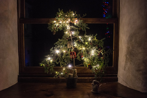 Our Christmas Tree, 2017 | by goingslowly