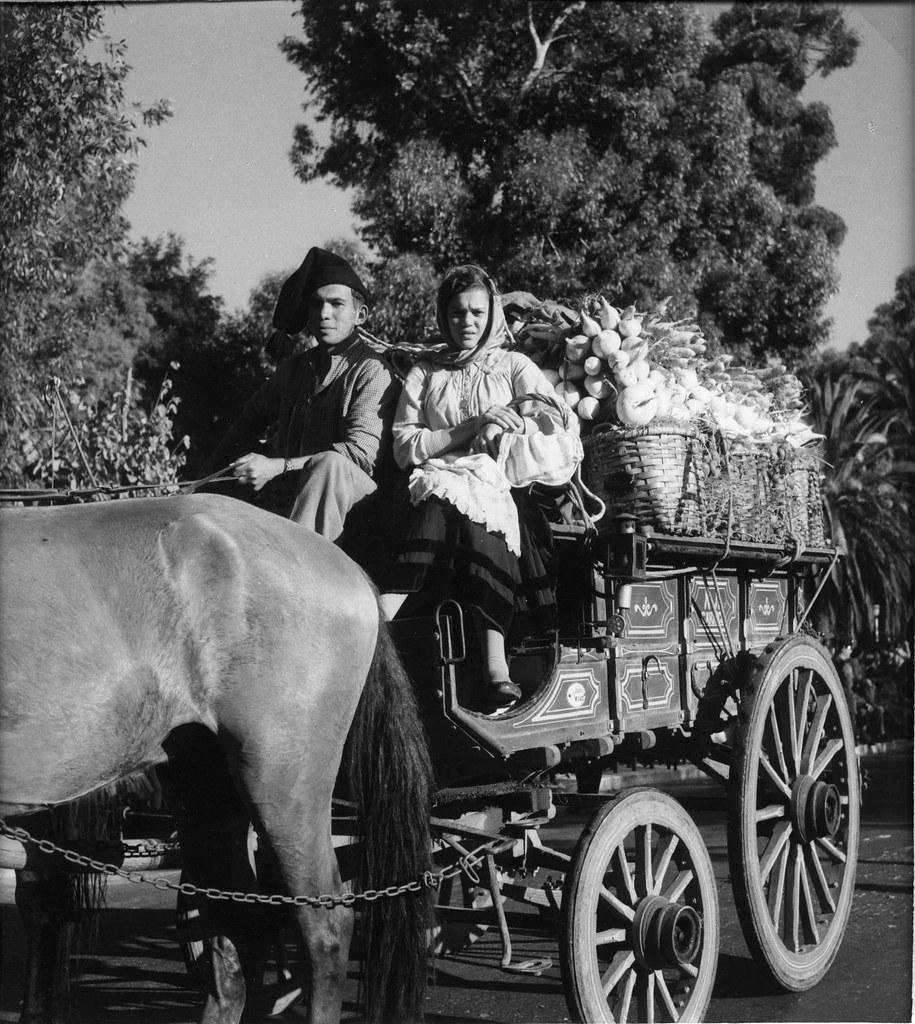 Saloios numa carroça de hortaliça, Loures (A. Pastor, c. 1950)