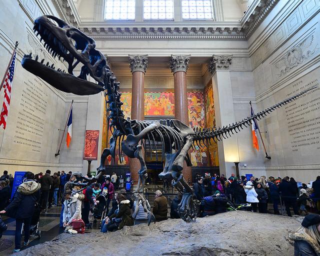 Museo de historia Natural de Nueva York, lugar donde se rodó Una noche en el Museo