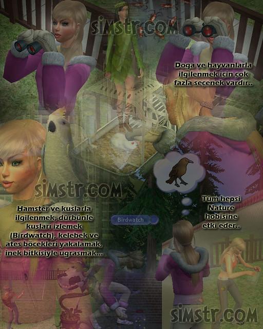 The Sims 2 FreeTime Hobbies Nature Doğa Hobisi Birdwatch