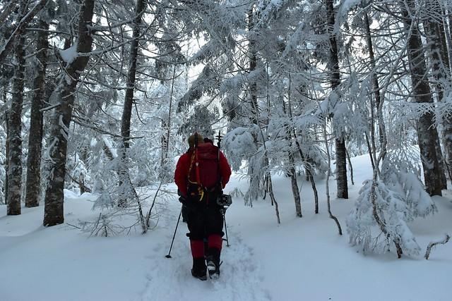 冬の八ヶ岳 美濃戸口~行者小屋登山道