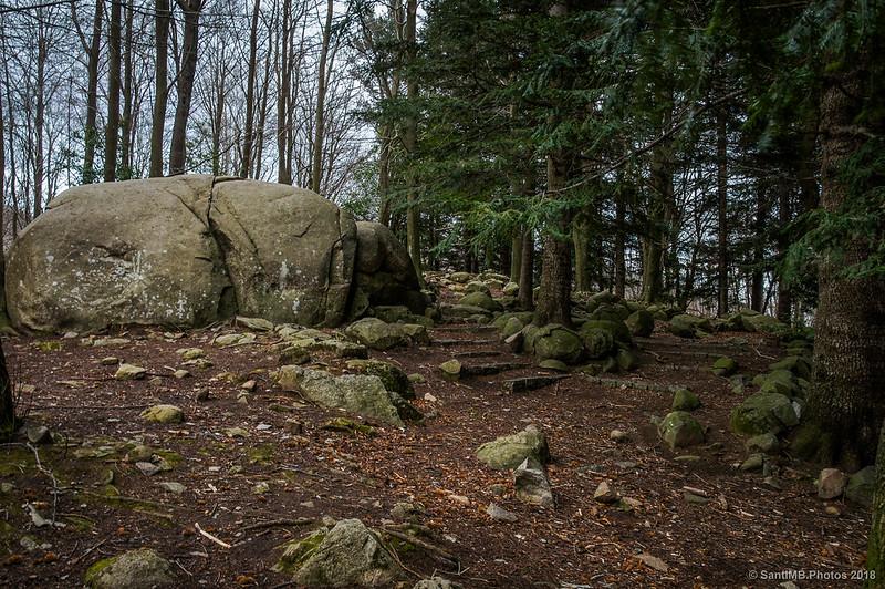 Gran roca en el pequeño abetal de Santa Fe