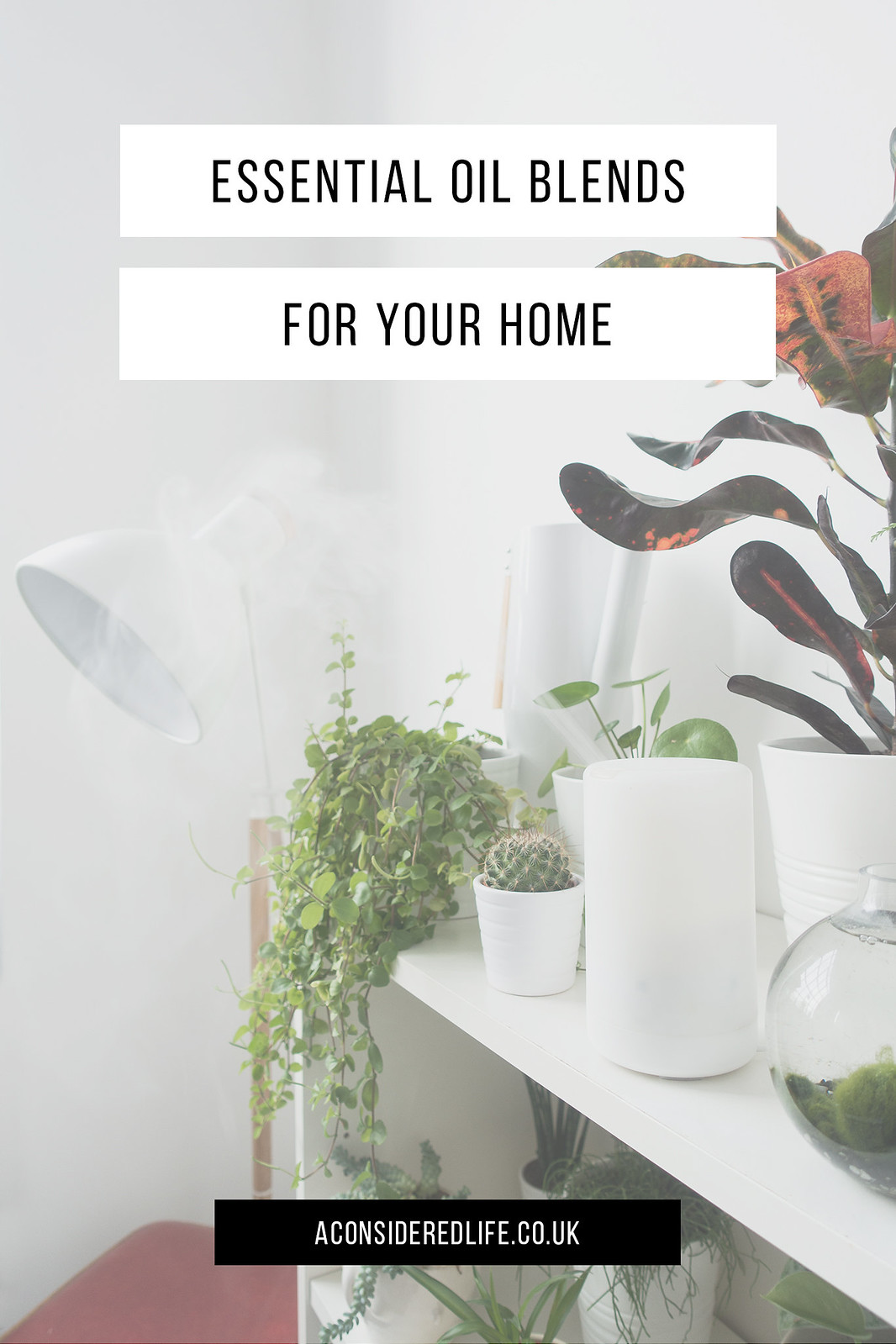 Essential Oil Blends For Your Home