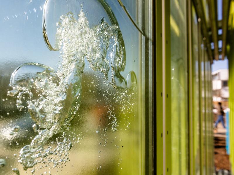 建築物外牆,長滿藻類的空心板。圖片來源:影片截圖。