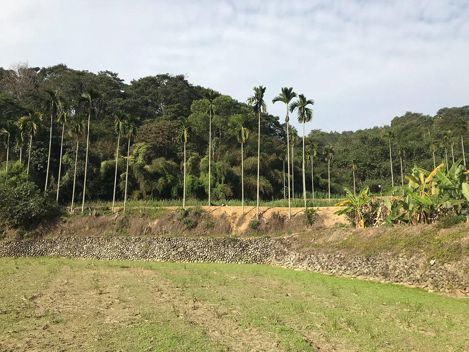 思考農村的未來?從自然生態開始!圖片來源:王堯弘。